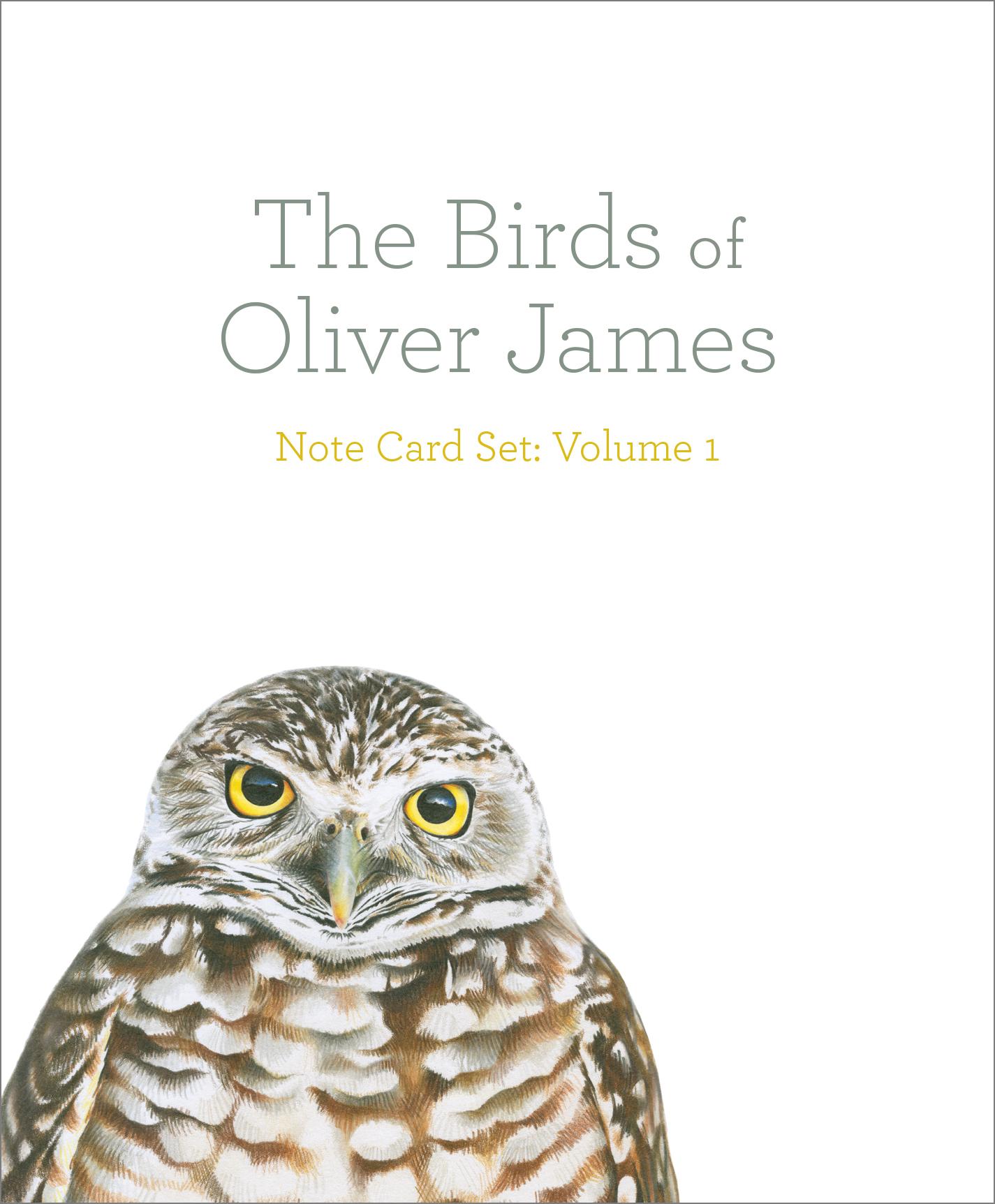 The Birds of Oliver James Note Card Set: Volume 1