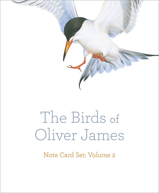 The Birds of Oliver James Note Card Set: Volume 2