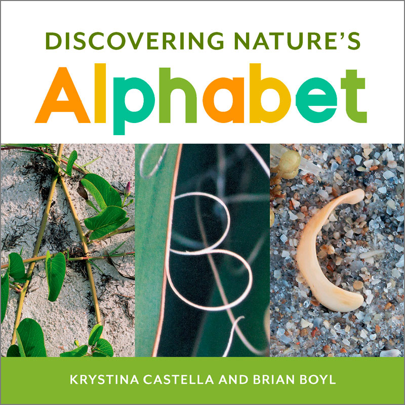 Discovering Nature's Alphabet (board book)