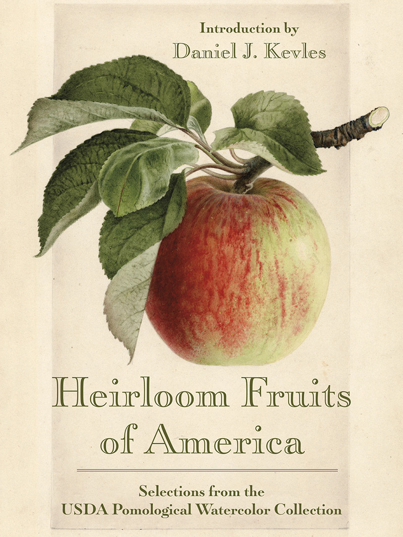photo of book titled Heirloom Fruits of America