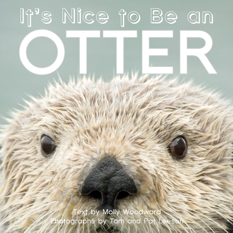 It's Nice to Be an Otter
