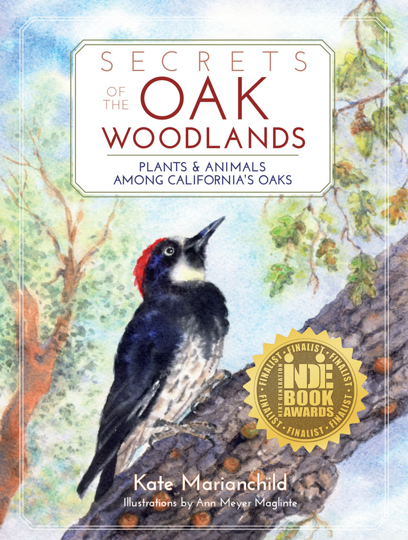 Secrets of the Oak Woodlands: Plants and Animals among California's Oaks